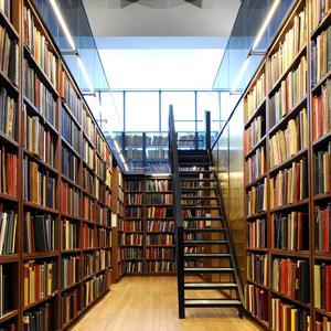 Библиотеки Белого